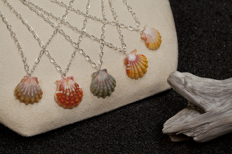 Photo ofSterlilng Silver Sunrise Shell Necklace